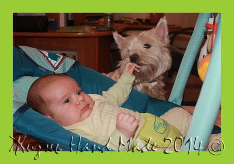 заводить ли ребенку собаку